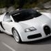 Veyron Supersport покажут в ближайшем будущем, small