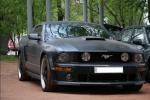 Матовый Mustang, small